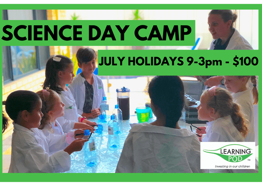 Science Day Camp July holidays